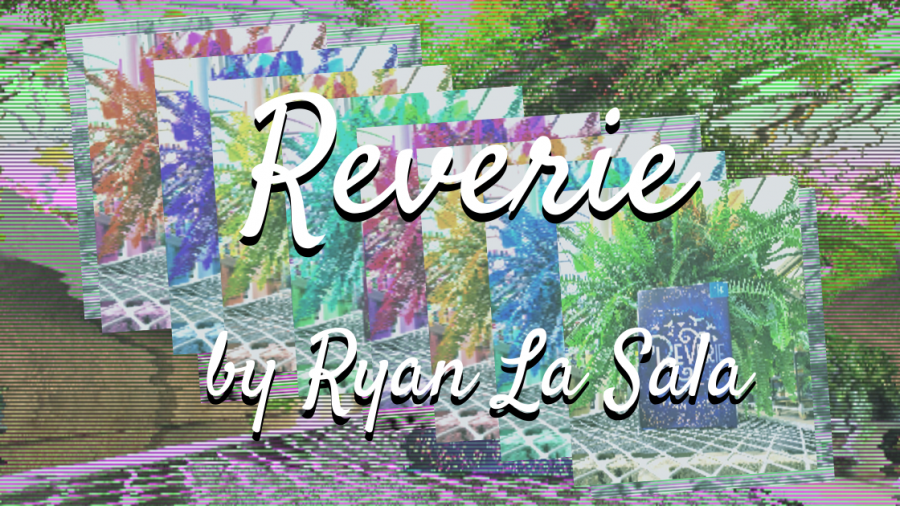 reverie review resized